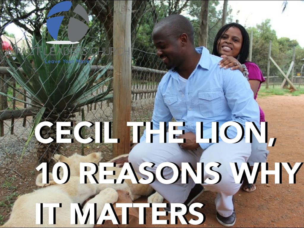 LION.001