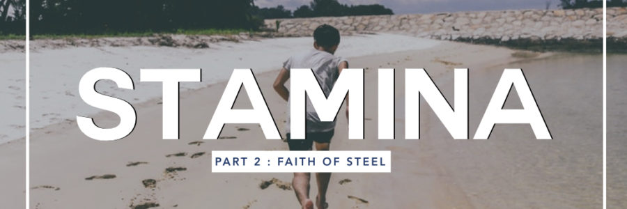 Stamina 2 : Faith Of Steel